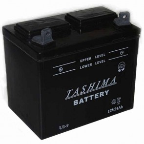 Battery for lawn tractors 12V, 24A. L: 195,w: 130, H: 185mm, + left. (acid not included).