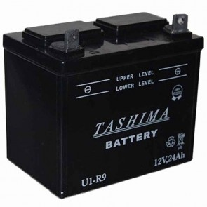 Battery for lawn tractors 12V, 24A. L: 195, w: 130, H: 185mm, + right. (acid not included).